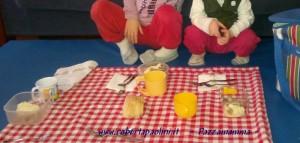 picniccasa
